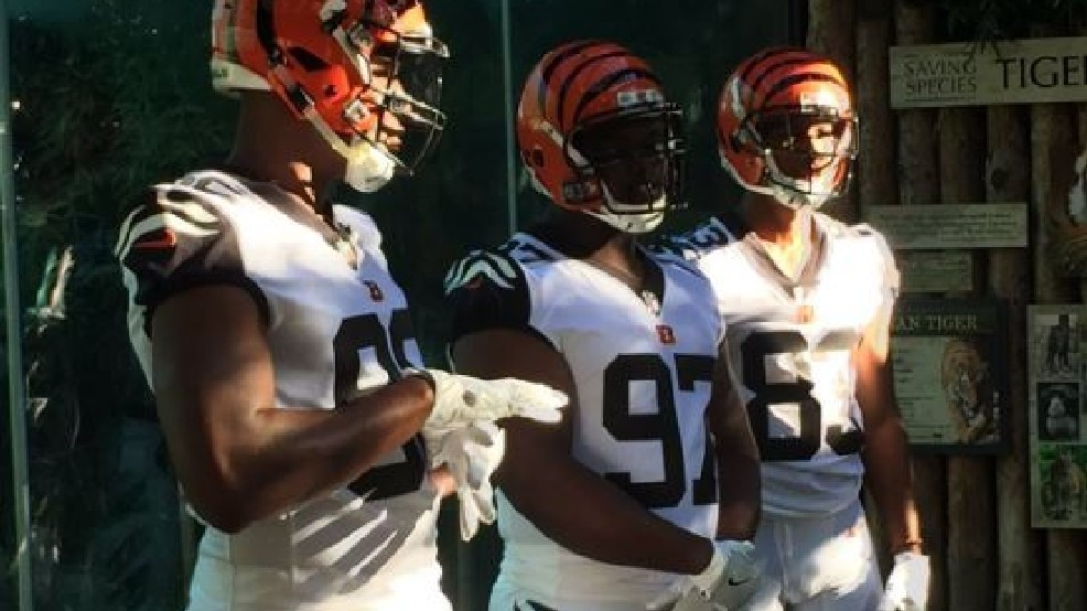 the latest a8808 d1627 Bengals Color Rush uniforms revealed for Thursday Night ...