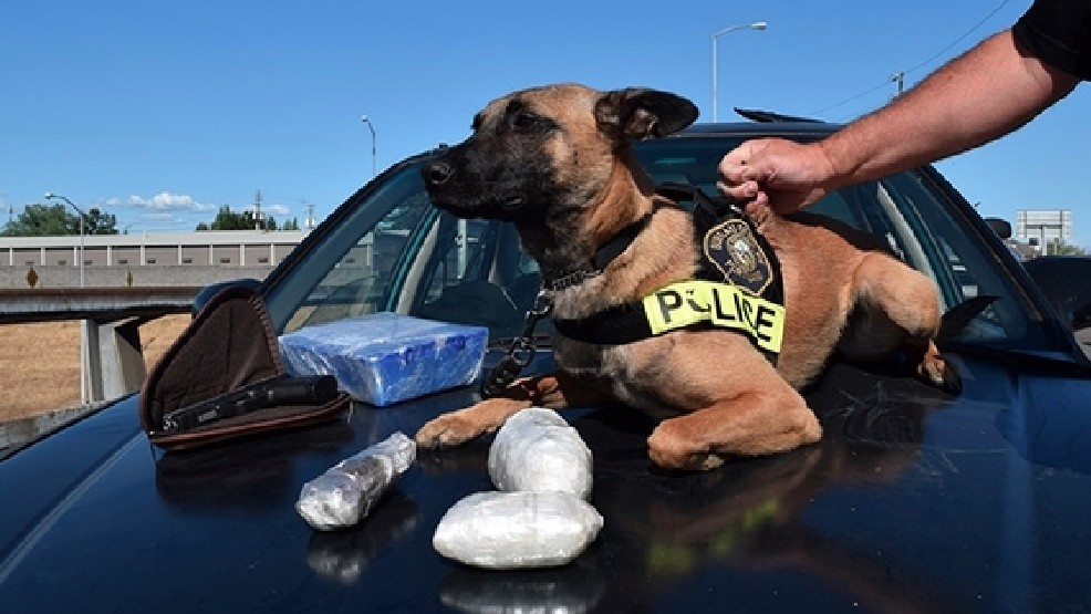 Police K-9 helps locate $300K worth of heroin, meth during